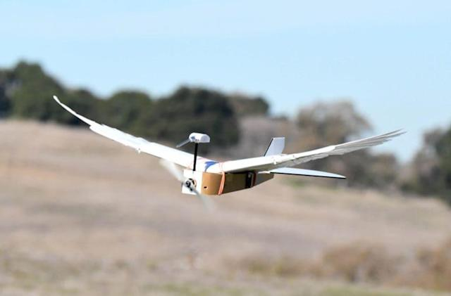 Pigeon-inspired drone bends its wings to make it more agile