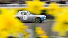 Goodwood 75th Members' Meeting: your best photos