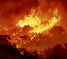 Wind fans wildfire in California canyons, residents flee