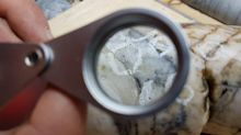 Great Atlantic Second Drill Hole Completed Two Veins Intersected Both Contained Visible Gold