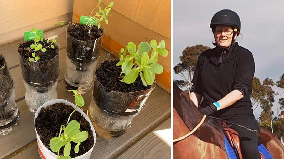 'Genius' hack to keep Woolies plants thriving