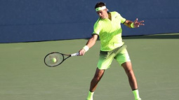Former champion del Potro roars into second round