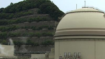 Japan reactor restarts as critical report issued