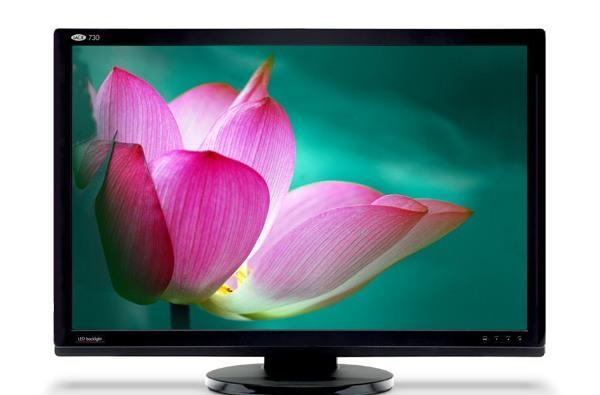 LaCie's new LCDs put NTSC to shame