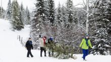 Snow on Christmas Day in eastern Canada, experts say