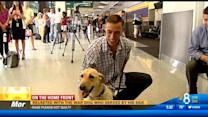Reunited with the war dog who served by his side