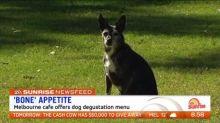 Melbourne cafe offers dog degustation menu