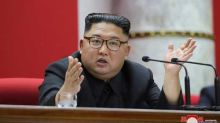 Kim Jong-un in coma, sister to take over says South Korean diplomat
