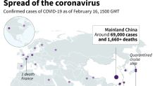 The global spread of the coronavirus: Where is it?