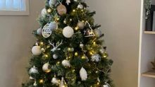 'Genius' hack for extra fluffy Christmas tree in seconds