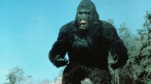 King Kong Lives: Revisiting the terrible Kong flop you never saw