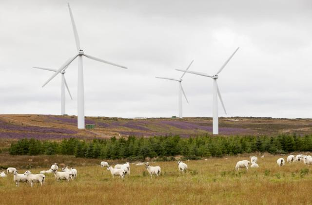 Scotland generated enough wind energy to power its homes twice