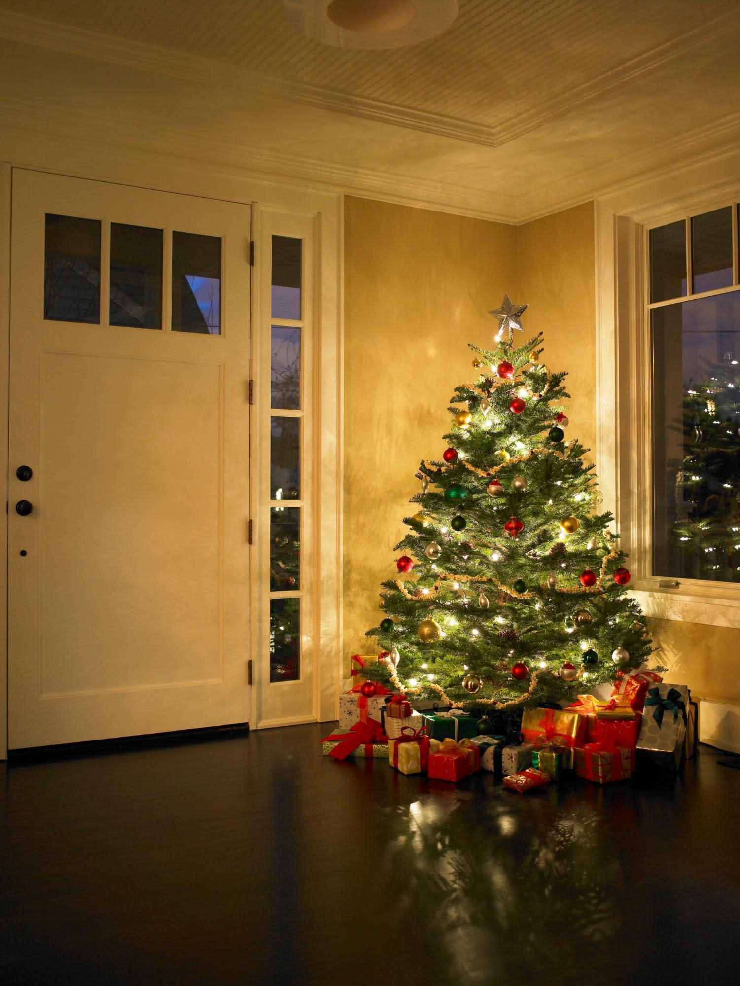 Krinner Christmas Tree Genie - Image Home Garden and Tree Rtecx.Com
