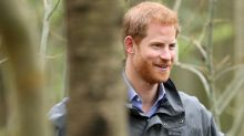 'Unlimited holidays', inner-work days and free lunches: The perks Prince Harry's new company offers its staff