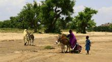 Mais de 60 mortos em nova chacina na região sudanesa de Darfur