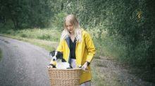 Heißer Asphalt schadet Hundepfoten: So transportierst du deinen Hund mit dem Fahrrad