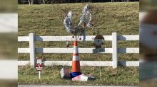 Christmas-decorated Cone Weed in North Carolina town raises more than $14,000 for charity