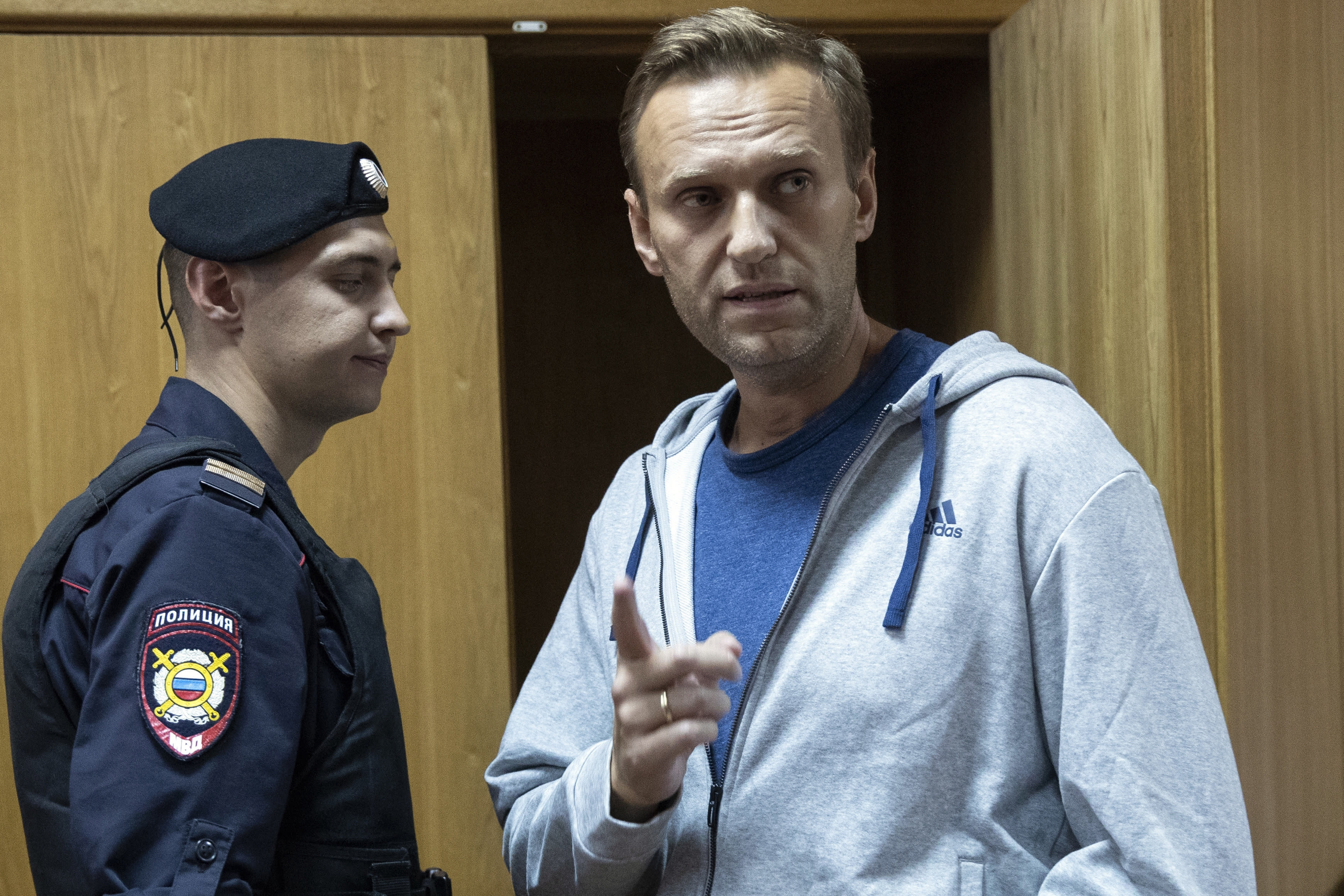 Russian Federation  targets Alexei Navalny with mass raids