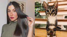 """Bianca Andrade adota gato e o batiza de Publi Post: """"Novo bebê da família"""""""