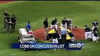 Line drive injury raises youth baseball safety questions