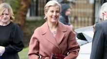 Countess of Wessex wears stylish blush coat to ballet school: Shop 7 affordable alternatives