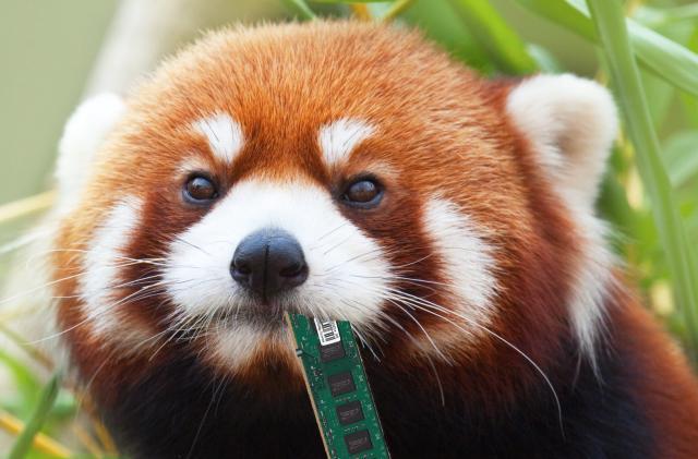 Firefox 'performance' tab will curb its RAM hunger