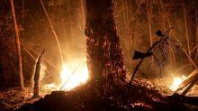 Brasil despliega 44.000 militares para luchar contra los incendios