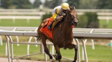 Questions remain but Attfield still pointing Shirl's Speight to Kentucky Derby
