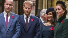 Royal family cuts off Harry and Meghan after doco
