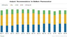 An Investor's Overview of BioMarin Pharmaceutical Stock