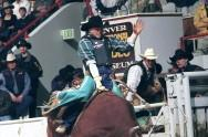 New device captures rodeo bull physics