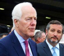 Texas Senator Ted Cruz on Democrats' voting rights bill: 'Hell, no'