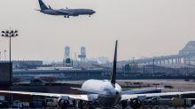 Senator Demands Explanation for Animals' Deaths on United Airlines