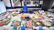 UK fishing industry faces 'grave' threat from new EU policy