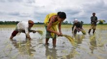 Explainer: In India, all eyes on a monsoon that is critical for the economy