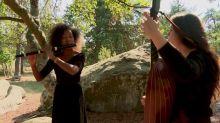 La musique classique s'invite parmi les arbres pour le premier Festival des forêts en Ile-de-France