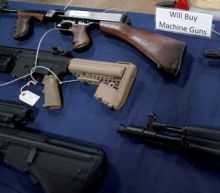 Americans own nearly half world's guns in civilian hands: survey