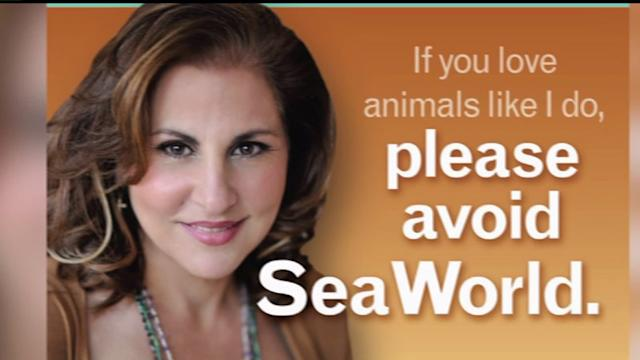 PETA Responding to An Airport Ad Against Sea World
