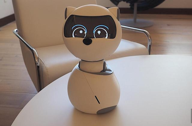 Kiki the social robot is a mechanical animal who wants to be your friend