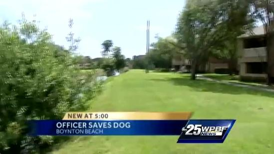 Police officer saves puppy from drowning