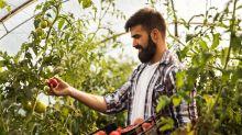 Neuer Trend: Digitaler Garten mit echter Ernte
