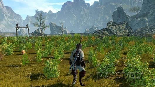 The Daily Grind: What sort of mechanical changes would cause you to quit an MMO?