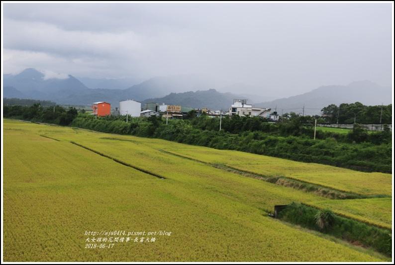長富大橋(大地色塊)-2018-06-28.jpg