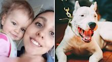 Girl, 1, dies after vicious dog attack at family home