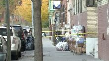 Newborn babies found dead after being 'thrown out window'