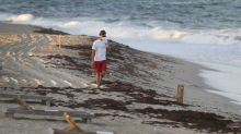 Can a $2.5bn eco-initiative save Florida's beaches?