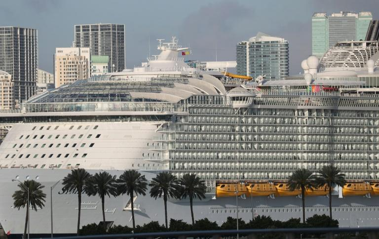 A proposed debt offering by Royal Caribbean Cruises will offer the latest indication of investor appetite for a hard-hit sector (AFP Photo/JOE RAEDLE)