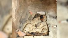 Tens of Cat Mummies and 100 Cat Statues Found Near Ancient Egyptian Pyramid
