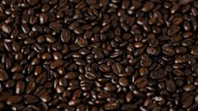 Rediscovered wild coffee species could help climate-proof drink's future – study