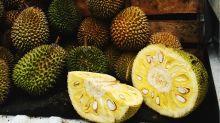 Vegetarier lieben Jackfruit: So bereitet man den trendigen Fleischersatz zu